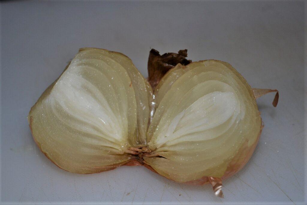 Head of onion frozen by high-voltage ultrasound